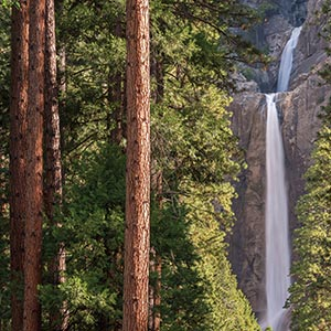 Yosemite National Park Canvas Prints