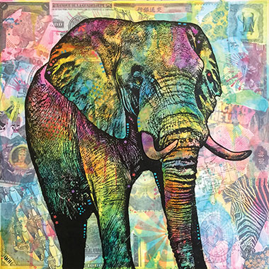 Elephants - Additional 10% Off